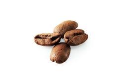 4 кофейного зерна на белой предпосылке Стоковые Фото