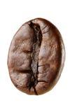 Кофейное зерно макроса Стоковое Фото