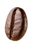 Кофейное зерно макроса Стоковая Фотография RF