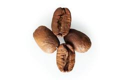 Кофейное зерно с острой тенью, изолированным макросом Стоковое Изображение