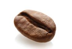 Кофейное зерно Стоковое Фото
