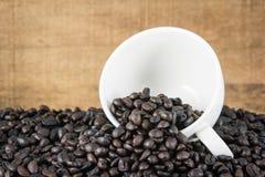 Кофейные зерна в белой чашке стоковые фотографии rf