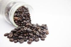 Кофейные зерна в бутылке на белой предпосылке Стоковое Фото