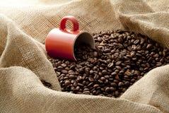 Кофейные зерна в вкладыше пеньки Стоковое фото RF
