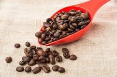 Кофейные зерна в ложке и разбросанные фасоли на мешковине Стоковое Фото