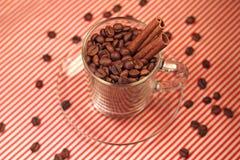 Кофейные зерна в стеклянной чашке с циннамоном Стоковое Фото
