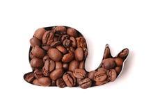 Кофейные зерна в форме улитки на белой предпосылке Стоковые Изображения RF