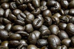 Кофейные зерна жаркого Брайна предпосылки близкий макрос мухы цветка отдыхая вверх Стоковая Фотография