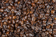 Кофейные зерна зажарили в духовке еду Стоковое Изображение