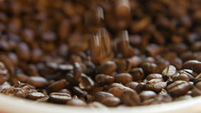 Кофейные зерна заполняя шар акции видеоматериалы