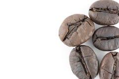 Кофейные зерна изолированные в белой предпосылке Стоковые Фото