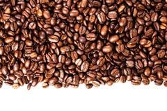 Кофейные зерна изолированные на белой предпосылке с copyspace для te Стоковое Изображение