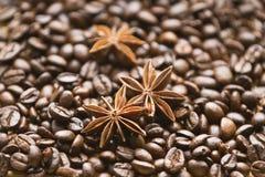 Кофейные зерна и анисовка Стоковое фото RF