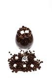Кофейные зерна и кубы сахара внутри бокала Стоковое Изображение RF
