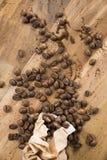 Кофейные зерна и сумка Стоковые Фото