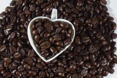 Кофейные зерна и чашка Стоковое фото RF