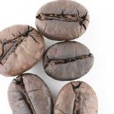 Кофейные зерна макроса изолированные в белой предпосылке Стоковое фото RF