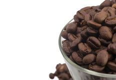 Кофейные зерна макроса Стоковое Изображение