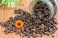 Кофейные зерна на деревянной предпосылке стоковое фото