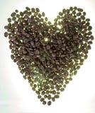 Кофейные зерна на сером цвете - белая предпосылка Конец-вверх Стоковые Изображения