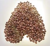 Кофейные зерна на сером цвете - белая предпосылка Конец-вверх Стоковые Фото