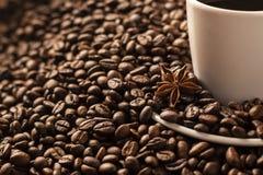 Кофейные зерна с белой анисовкой чашки и звезды Стоковое фото RF