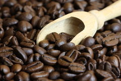Кофейные зерна Стоковое Изображение