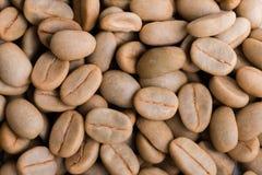 кофейные зерна arabica ООН-жаркого сырцовые Стоковые Фото
