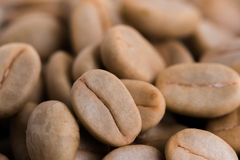 кофейные зерна arabica ООН-жаркого сырцовые Стоковое Изображение RF