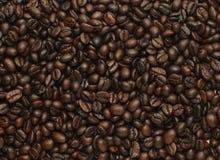 Кофейные зерна Roated, можно использовать как предпосылка Стоковые Изображения