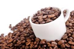 Кофе зерна Стоковое Изображение RF