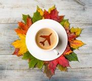 Кофе и листья осени стоковые изображения