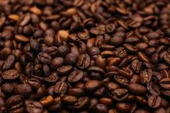 кофе крупного плана фасолей предпосылки astract Стоковое фото RF
