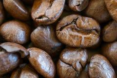 кофе крупного плана фасолей предпосылки astract Стоковые Изображения RF