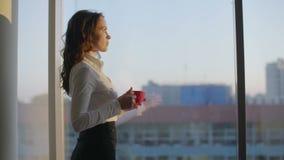Кофе молодой красивой бизнес-леди выпивая готовя панорамное окно в европейском современном офисе сток-видео