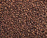 кофе предпосылки Стоковые Фото