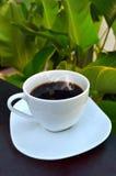 Кофе утра в саде Стоковые Изображения RF