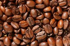 кофе фасолей предпосылки Стоковая Фотография RF