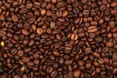 кофе фасолей предпосылки Стоковые Изображения