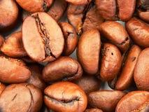 кофе фасолей предпосылки Стоковое Фото