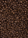 кофе фасолей Стоковое фото RF