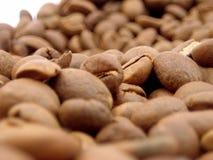 кофе фасоли близкий вверх Стоковое Изображение RF
