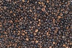 кофе фасоли предпосылки весь Стоковое Изображение