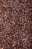 кофе фасоли предпосылки Стоковое Изображение RF