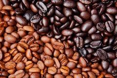 кофе фасоли предпосылки Стоковая Фотография