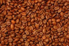 кофе фасоли Стоковое фото RF