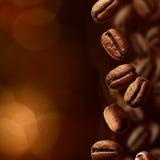 кофе фасолей разлил Стоковое Изображение RF