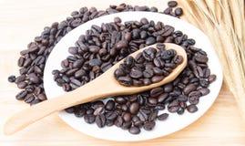 кофе фасолей свежий Стоковое фото RF