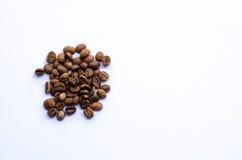 кофе фасолей свежий Стоковое Фото