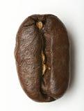 кофе фасоли близкий вверх Стоковое Изображение